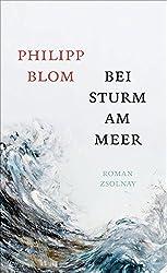 Bei Sturm am Meer: Roman