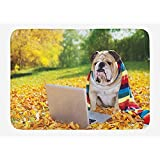 NasNew English Bulldog Bath Mat, Dog in The Park with a Laptop and Rainbow Colored