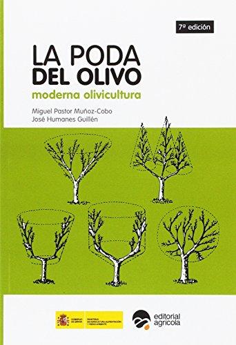 Descargar Libro La poda del olivo: moderna olivicultura de Pedro Plasencia