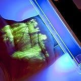 Dieb überführen! UV-Set gegen Diebstahl | UV-Pulver, UV-Lampe, Pinsel | Detektiv Set | Jetzt noch effektiver!