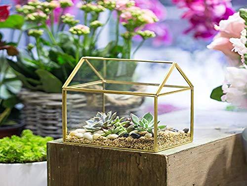 Pflanzgefäß, Haus Glas geometrische Formen Moderne Blume für Sukkulenten Pflanzen Moos Farn Blumentopf kleine Terrarium Box für Innenbereich Hochzeit Couchtisch Schreibtisch Tisch ()