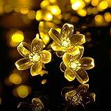 Qedertek Solar Lichterkette Außen, 7M 50 LED Blumen Lichterkette Warmweiß Wasserdicht Beleuchtung für Weihnachten, Garten, Hochzeit, Party usw