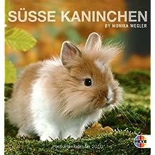Süße Kaninchen 2010. Postkartenkalender