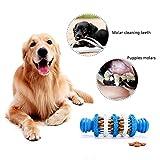 AUOKER Kaustäbchen für Hunde, Zahnreinigung, Zahnreinigung, Kauspielzeug für Hunde, Bissfest, 100% Nutrikautschuk, ungiftig, für Kleine und mittelgroße Hunde
