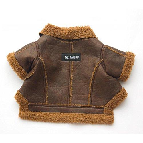 TAILUP Haustier Hund Lederjacke, Mode Reißverschluss Welpen Mantel Warme Winterjacken Haustier Kleidung für Herbst und Winter (S, (Neue Tshirt Kostüme Batman)