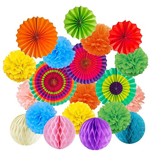 Zeagro Party Dekoration 19 Stücke Bunte Fiesta Papier Fans Seidenpapier Wabenkugeln Hängende Dekoration für Geburtstag Hochzeit Karneval Baby Shower Home Party Supplies Gefälligkeiten-Multicolor