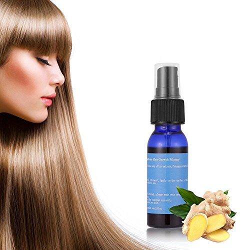 Esencia de crecimiento capilar, 30ml Extracto de jengibre Regeneración rápida del cabello Pérdida de Productos para el Crecimiento Aceite masculino Calvo