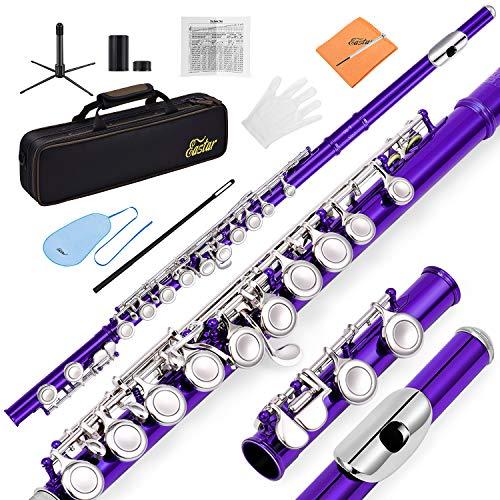 Eastar EFL-1Pu C Flöte 16 geschlossen Löcher Querflöte Instrument Vernickelt Flöte Anfänger Set mit Flötenständer Koffer Reinigungstuch Handschuhe, Lila