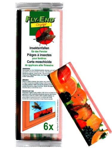 Fly de gamme insectes fenêtre