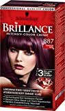 Brillance Intensiv-Color-Creme 887 Mahagoni Satin, 3er Pack (3 x 143 ml)