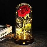 shirylzee Rosas Bella y la Bestia, Kit de Rosa Encantada, Regalos para Día de Navidad, San Valentin, Cumpleaños, Boda, Aniver