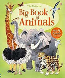 Big Book of Animals (Big Books)