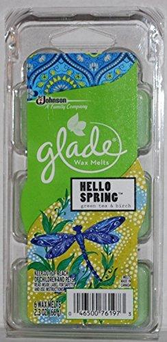 Glade Wachs schmilzt Hello Spring 6Zählen