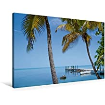 Premium Textil-Leinwand 90 cm x 60 cm quer, FLORIDA KEYS Palmen & Meerblick | Wandbild, Bild auf Keilrahmen, Fertigbild auf echter Leinwand, Leinwanddruck: Traumhafter Ort (CALVENDO Orte)