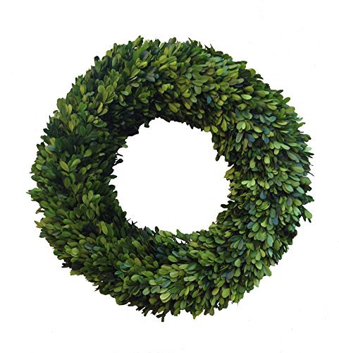 Mills Floral Boxwood Country Manor Round Wreath, 20-Inch by Mills Floral Company Floral Manor