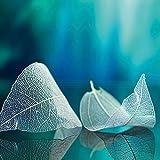 Eurographics White Leaves 30x30, Glas, Blau, 30 x 30 x 2 cm