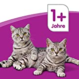 Whiskas 1+ Katzenfutter Fleischauswahl in Sauce, 48 Beutel (2 x 24 x 100 g) - 7