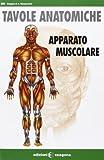 Apparato muscolare. Tavole anatomiche