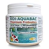 pondovit Koi-Aquabac, probiotische Filterbakterien, Starterbakterien, Milchsäurebakterien, 150 g für 150 m³ Teichwasser