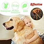xcool flea and tick collar for dogs and cats, safe and healthy natural formula waterproof flea collar to kills repels mosquitoes ticks, 20 inch 90 days protection (19.7 inch) XCool Flea and Tick Collar for Dogs and Cats, Safe and Healthy Natural Formula Waterproof Flea Collar to Kills Repels Mosquitoes Ticks, 20 inch 90 days Protection (19.7 inch) 51I 2BBTBc0eL