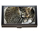 Titulaire de carte de visite en acier inoxydable, étui de carte de visite pour chat, animal en corde, pour hommes et femmes