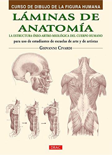 Láminas de anatomía: la estructura óseo-artro-miológica del cuerpo humano