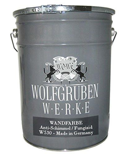 598eur-l-nano-argent-couleur-fongicide-anti-moisissure-couleur-moisissures-stop-anti-moisissures-cou