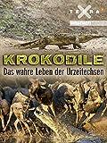 Krokodile - Das wahre Leben der Urzeitechsen