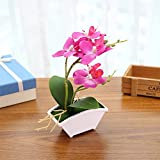 Orchid Simulation Flower with Flowerpot Potted,Fake Flower Ornaments,Artificial Plant Home Garden Office Decor