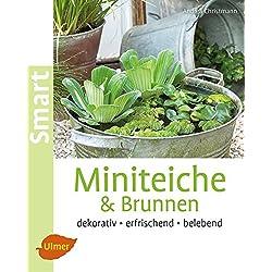 Miniteiche und Brunnen: Dekorativ, erfrischend, belebend