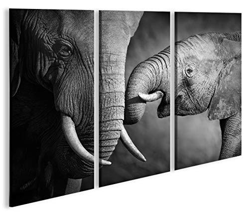 Imagen imágenes en lienzo Elefantes V23P elefante Baby XXL Póster Lienzo Cuadro...