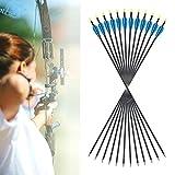 """Funtress 12pz 32 """"frecce in alluminio 3"""" frecce della paletta di paletto con punti di campo Suggerimenti sostituibili per ricurve arco e arco composto targeting o caccia"""