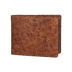 Fastrack Tan Mens Wallet (C0406LTN01)