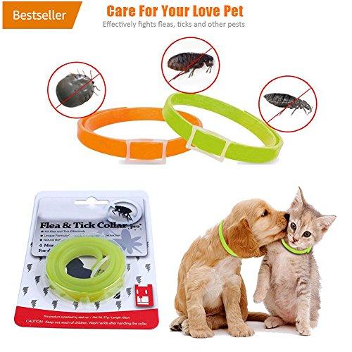 Handfly Floh- und Zeckenhalsband für kleine, mittlere und große Hunde & Katze wasserdicht Hundehalsband tötet Insekteneier 40/60cm