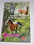 Evy und die Wildpferde 3 (Sommer der Veränderungen) bei Amazon kaufen