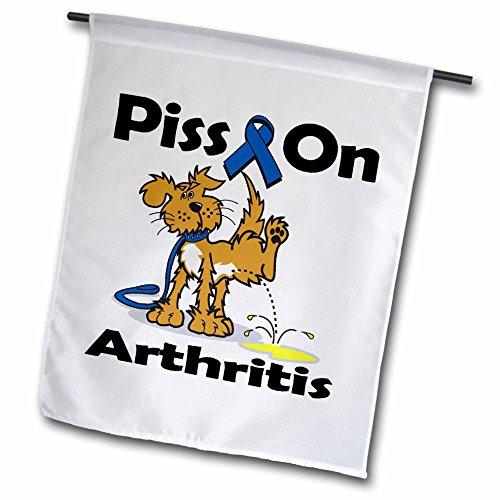 3dRose FL 115787_ 1Piss auf Arthritis Bewusstsein Band verursachen Design Garten Flagge, 12von 18