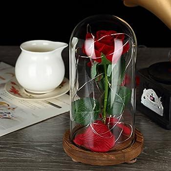 """Vollständiges """"Die Schöne Und Das Biest""""-set, Rote Seidenrose Und Led-licht Mit Herabgefallenen Blütenblättern In Glaskuppel Auf Einem Holzsockel Von Ysber Color Lamp Rose Shade 4"""