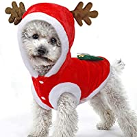 BulzEU Cute Elk Dog Christmas Clothes Pet Costume Hoodie Velvet Coat for Cats & Dogs Puppy Xmas Fancy Dress Warm Party Suit for Teddy, Yorkshire Terrier, Chihuahua, Pomeranian Festive Gifts (L, Red)