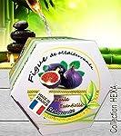 Bougie Relaxante parfum Figue de Méditerranée