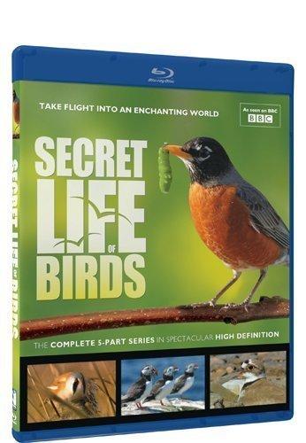 Secret Life of Birds - Blu-ray by