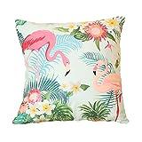 WangsCanis Flamingo Zierkissenbezüge 40cm x 40cm Kissenhuelle Lendenkissen Sofa Haus