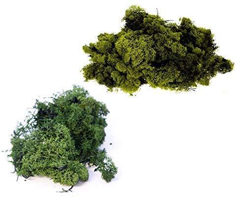 - Packung zu 2 Gemischte Farben 25g Bags - Rentier Moos Basteln Pflanzen Töpfe Blumen Display Modellier - dunkel grün & olivegrün ()