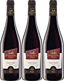 Oberkircher Winzer Collection Oberkirch Pinot Noir QbA 2017 Trocken (3 x 0.75 l)