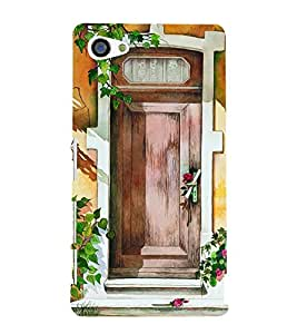 Beautiful Door Painting 3D Hard Polycarbonate Designer Back Case Cover for Sony Xperia Z5 Compact :: Sony Xperia Z5 Mini