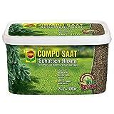 COMPO SAAT Schatten-Rasen 2 kg