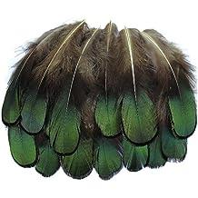 SODIAL(R) 20 Pcs Verde Senora Amherst Bronce Faisan Plumaje Plumas Pulgadas Largo 1.5-3 pulgadas