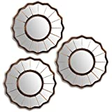 Art Street Lustrus Flower Decorative Wall Mirror (Set of 3)(Size - 9 x 9 inch)