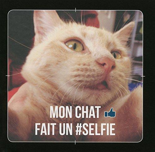 Mon chat fait un selfie