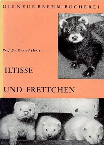 Iltisse und Frettchen (Die Neue Brehm-Bücherei / Zoologische, botanische und paläontologische Monografien)