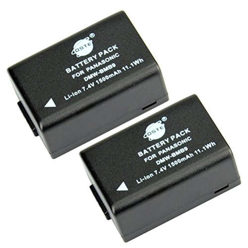 dster-2pcs-dmw-bmb9e-rechargeable-li-ion-battery-for-panasonic-dmw-bmb9-dmw-bmb9pp-and-lumix-dmc-fz4